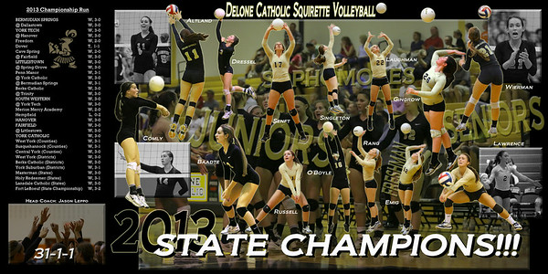 Delone Catholic Volleyball Championship Collage