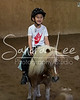 Hope Equestrian - Sandra Lee Photography