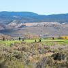 148NV STATE Girls Golf at Eagle Valley West GC ©2016MelissaFaithKnight&FaithPhotographyNV_0336