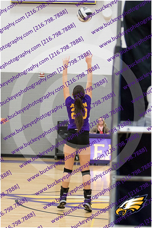 20150930_175907 - 0031 - AMS Girls Purple Volleyball