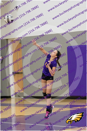 20150930_174933 - 0004 - AMS Girls Purple Volleyball