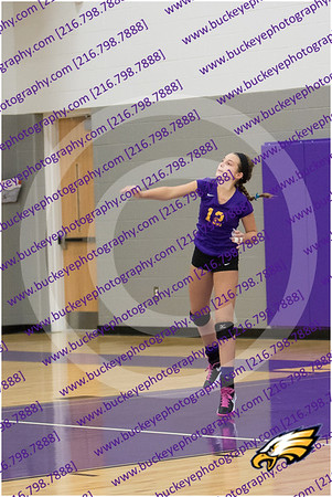 20150930_174808 - 0002 - AMS Girls Purple Volleyball