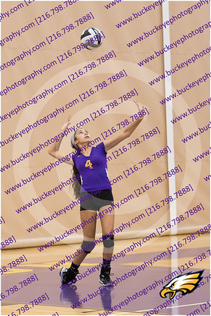 20150930_175832 - 0027 - AMS Girls Purple Volleyball