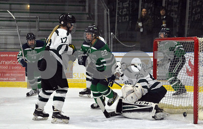 Photo by Albert J. Marro  Endicott's Jade Meier, left, begins celebrating after blasting a shot past Castleton goalie Alexis Kalm during Saturday's opening round of the Rutland Herald Invatational at Spartan Arena in Rutland Town. The Gulls won 7-3.