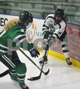 Photo by Albert J. Marro   Castleton's Jocelyn Forrest (9) digs the puck out of the corner as Endicott's  Nicole Demers (27) moves in during Saturday's opening round of the Rutland Herald Invatational at Spartan Arena in Rutland Town. The Gulls won 7-3.