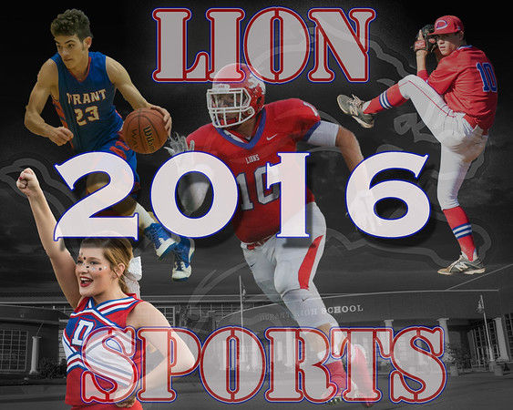 DHS Sports 2016