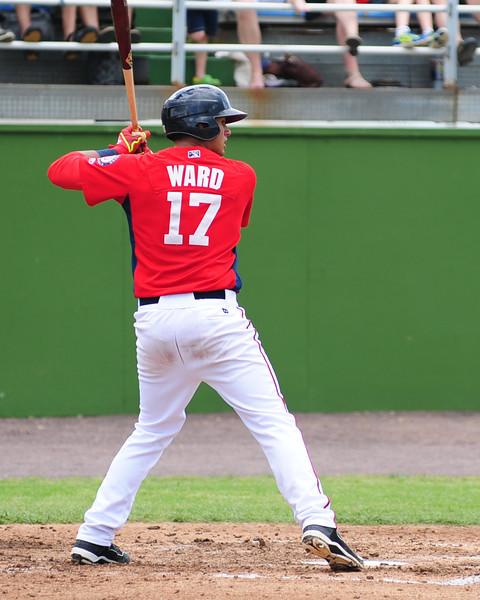 ward (8)