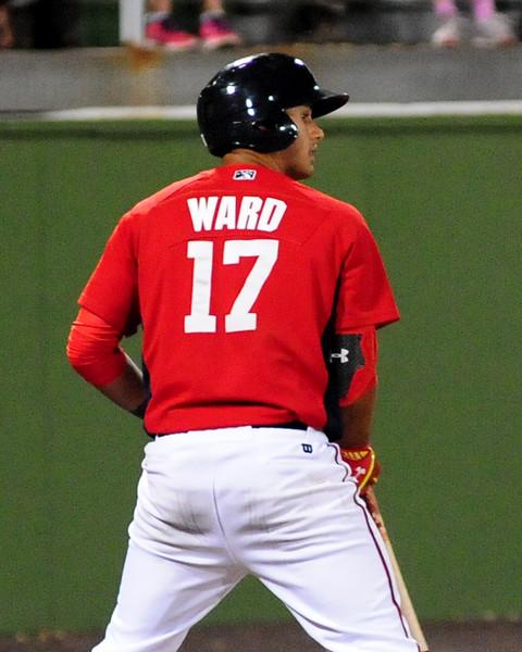 ward (31)
