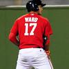 ward (7)
