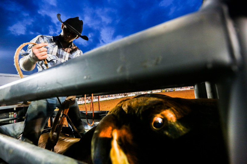 Nadav Soroker/Times-Georgian<br /> <br /> Joseph Augeri, of Bremen, prepares for his shot at the bull ride at the 13th annual Carrollton Stampede Rodeo at the VFW Fairgrounds, on Friday, July 13, 2018.