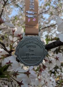 Korea ..... The 28th Gyeongju Cherry Blossom Marathon (5K)