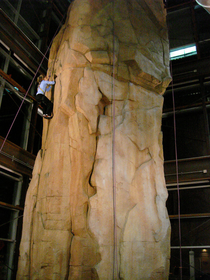 Check out this climbing wall in the REI store.