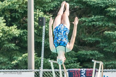 Swim - 2014 All-City Dive 15-18 Girls Final