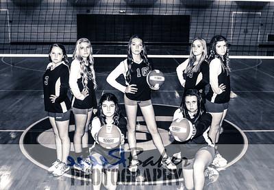 2014 Rocket Volleyball_0605