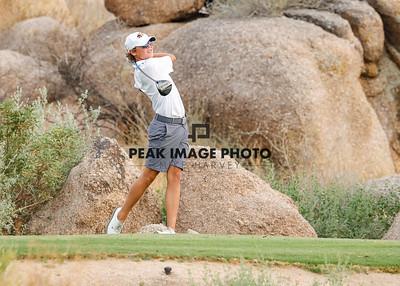 Golf at TroonN-2955