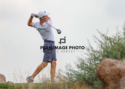 Golf at TroonN-2422