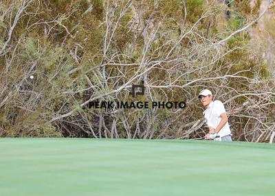 Golf at TroonN-2265