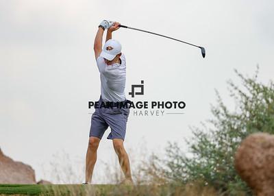 Golf at TroonN-2408