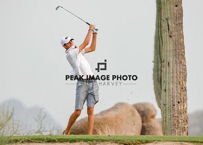 Golf at TroonN-4245
