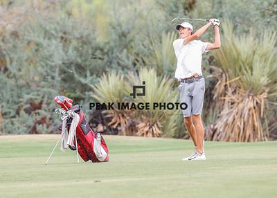 Golf at TroonN-2161