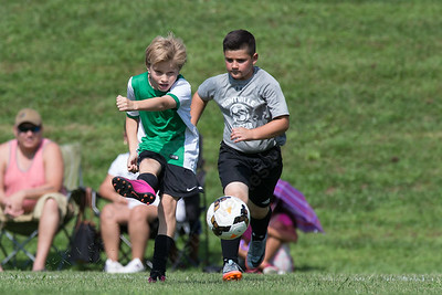 Wallingford's Talan Burr gets a shot off Saturday during the TWIST Soccer Tournament in Wallingford Aug. 19, 2017 | Justin Weekes / For the Record-Journal