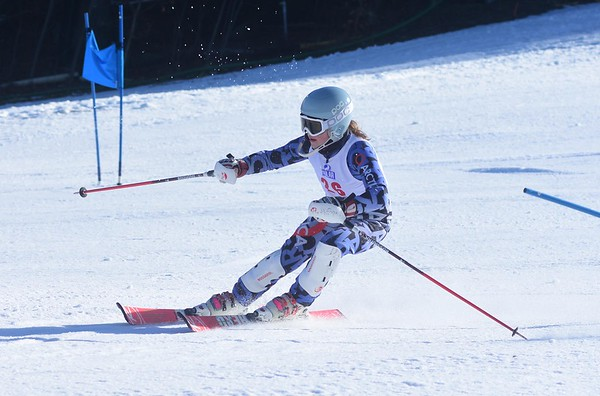 2018 MIAA Alpine State Championship