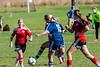 soccer-6986