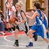 Basketball Girls 5-6 Montmorency vs Dixon Catholic - Tuesday, Jan. 27, 2015 - Frame: 3297