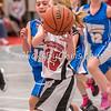 Basketball Girls 5-6 Montmorency vs Dixon Catholic - Tuesday, Jan. 27, 2015 - Frame: 3312