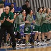 The Elyria Catholic bench cheers on the team. Amanda K. Rundle -- The Morning Journal