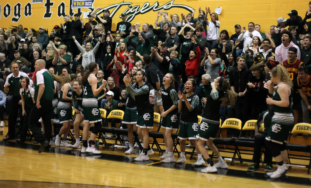 . The Elyria Catholic bench and fans react to a score during the final minutes. Randy Meyers -- The Morning Journal