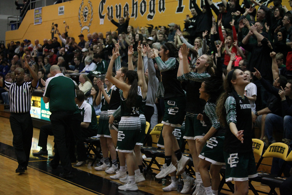 . The Elyria Catholic bench and fans react to a score against Chippewa. Randy Meyers -- The Morning Journal