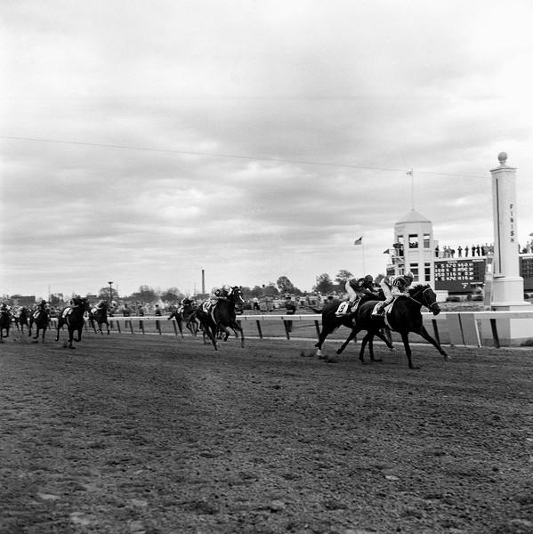 Horses  Race  Kentucky Derby        1961