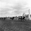 Horses  Race  Kentucky Derby        1961