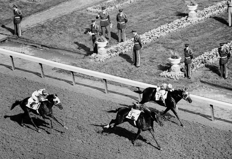 Tam Kentucky Derby Winner 1958