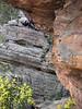 adam sentinal cave