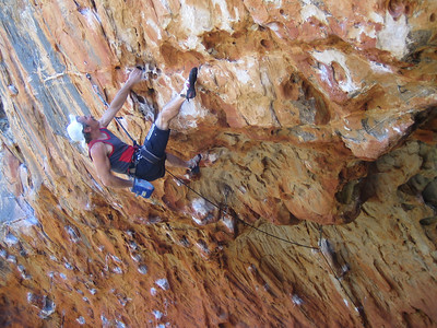 Malcom(HB), wearing his favorite hat, on his favorite Monkey Puzzel(28) The Gallery, Grampians