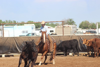 06-15-18 2nd go of cutting SD H.S. Rodeo Finals