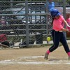Paul DiCicco - The News-Herald<br />  A Willoughby Starzz batter could not keep up with the early pitching of the Landsharks.