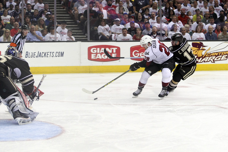 Michael Johnson - The News-Herald<br /> Lukas Sedlak of the Lake Erie Monsters (28) fights for possession of the puck against Chris Bourque (17) during game 4 of the Calder Cup Finals at the Quicken Loans Arena on June 11, 2016. The Lake Erie Monsters defeated the Hershey Bears 1-0 in overtime to win the Calder Cup.