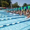 Michael Johnson - The News-Herald<br /> Swimmers dive into the water at the Suburban Swim League Championships at Mentor Civic Center pool on July 30, 2017.