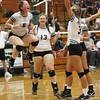 Elyria Catholic's Lydia Wetzel (5) cannot contain her excitement as the Panthers beat Lorain In five sets. Amanda K. Rundle -- The Morning Journal
