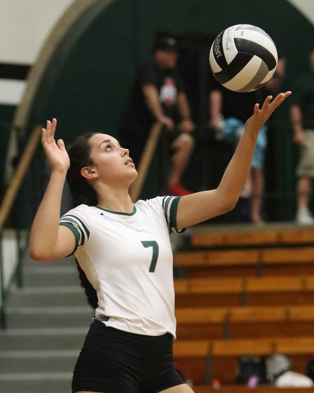 . Elyria Catholic\'s Stephanie Ferrer prepares to serve the ball. Amanda K. Rundle -- The Morning Journal