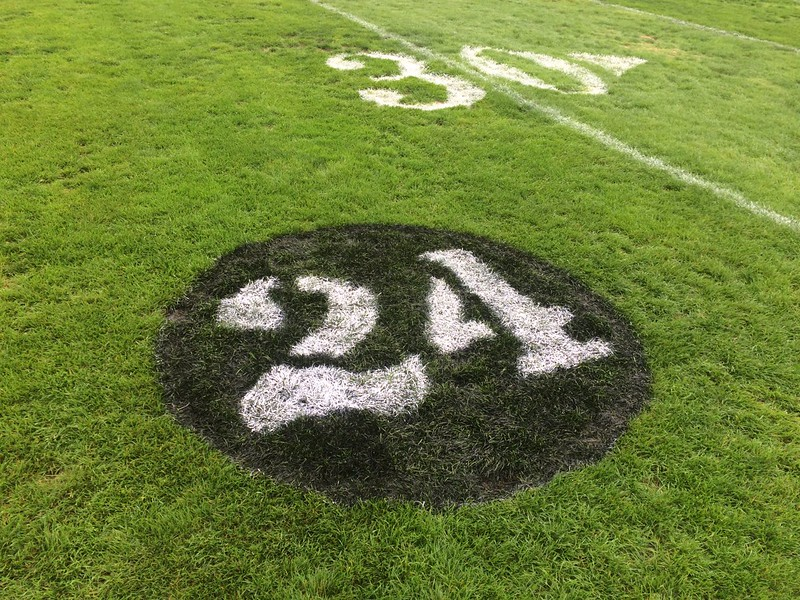 John Kampf - The News-Herald<br /> Andre Jackson's No. 24, painted into the Euclid grass for the team's game against Strongsville.