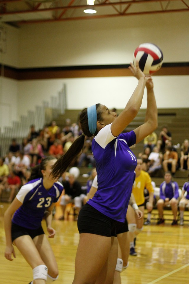 Pflugerville's Jaden Sturm sets the ball against Westwood on Tuesday at Westwood High School.