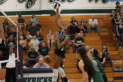 McNeil's Kara Teal goes for a kill against Stony Point on Tuesday at McNeil High School.