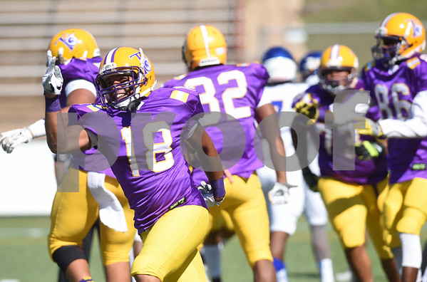 Texas College's (18) Bradford Lewis reacts after teammate Carlos Mosby scored a touchdown in the first half of their homecoming football game against Wayland Baptist University held Saturday at Christus Trinity Frances Rose Stadium.   (Sarah A. Miller/Tyler Morning Telegraph)