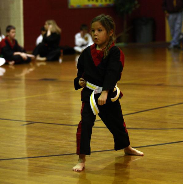 Karate Nov 2011 197
