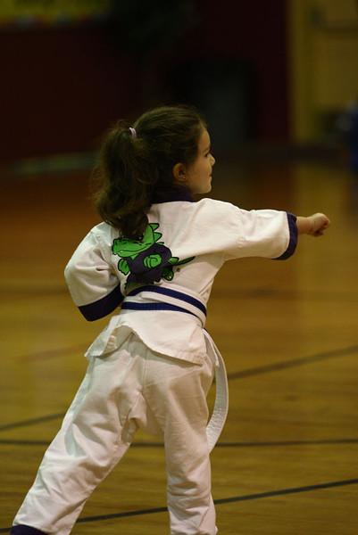Karate Nov 2011 161