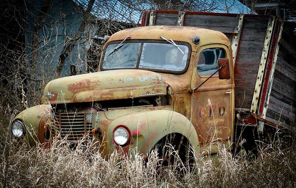 11-11-11, MN Pheasant Hunt